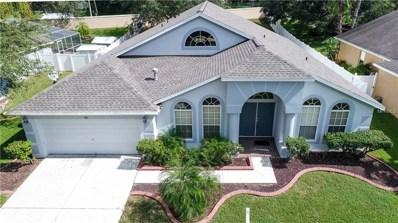 113 Rosana Drive, Brandon, FL 33511 - MLS#: T2923978