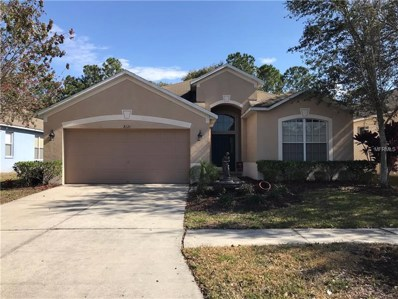 8121 Moccasin Trail Drive, Riverview, FL 33578 - MLS#: T2924153
