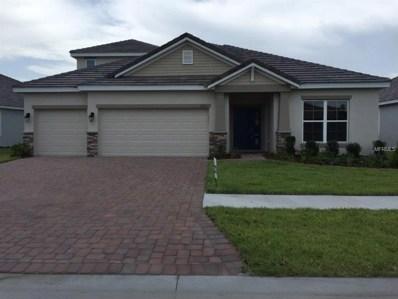 11933 Cinnamon Fern Drive, Riverview, FL 33579 - MLS#: T2924546