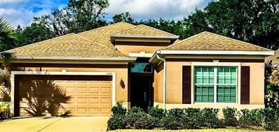 11415 Coventry Grove Circle, Lithia, FL 33547 - MLS#: T2924670
