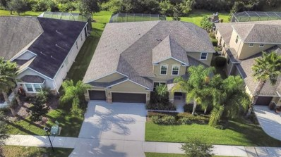 19326 Yellow Clover Drive, Tampa, FL 33647 - MLS#: T2924738