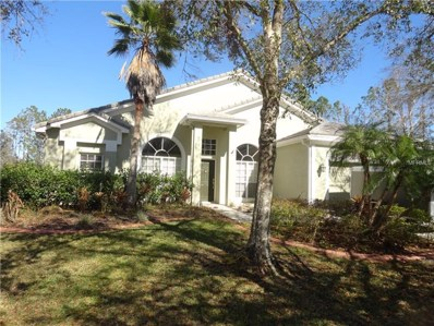 16318 Armstrong Place, Tampa, FL 33647 - MLS#: T2925118