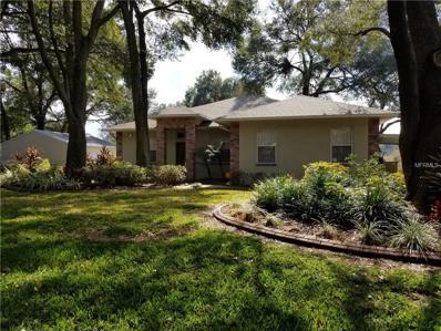 4101 Brooke Drive, Valrico, FL 33594 - MLS#: T2925191
