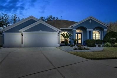 26614 Sea Hero Circle, Wesley Chapel, FL 33544 - MLS#: T2925343