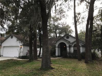 3803 Hollow Wood Drive, Valrico, FL 33596 - MLS#: T2925793