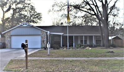 3909 Applegate Circle, Brandon, FL 33511 - MLS#: T2926323
