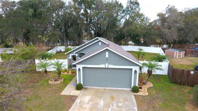 6202 Cannoli Place, Riverview, FL 33578 - MLS#: T2926409