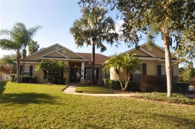 3207 Sheehan Drive, Land O Lakes, FL 34638 - MLS#: T2926668