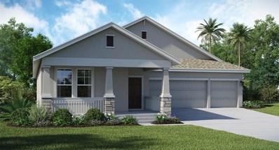 1703 Snapper Street, Saint Cloud, FL 34771 - MLS#: T2927296