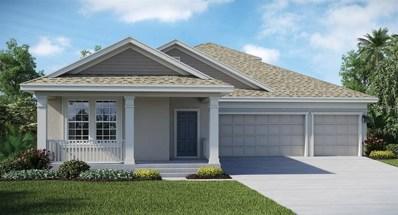 1707 Snapper Street, Saint Cloud, FL 34771 - MLS#: T2927317