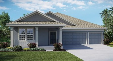 1711 Snapper Street, Saint Cloud, FL 34771 - MLS#: T2927383