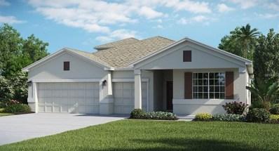 1713 Snapper Street, Saint Cloud, FL 34771 - MLS#: T2927405
