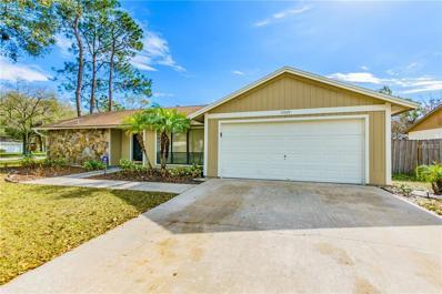 15429 Brushwood Drive, Tampa, FL 33624 - MLS#: T2927502