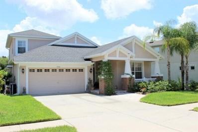 7550 Grasmere Drive, Land O Lakes, FL 34637 - MLS#: T2927825