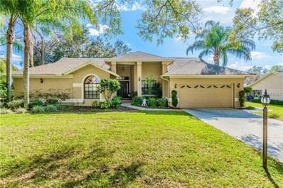 3909 Lithia Ridge Boulevard, Valrico, FL 33596 - MLS#: T2927872
