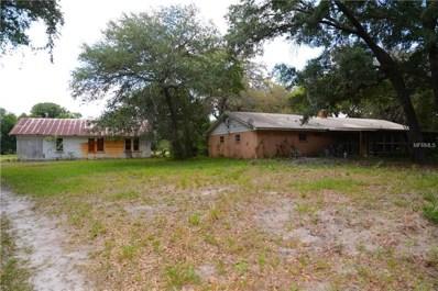 19757 Amanda Park Drive, Lutz, FL 33559 - MLS#: T2927927