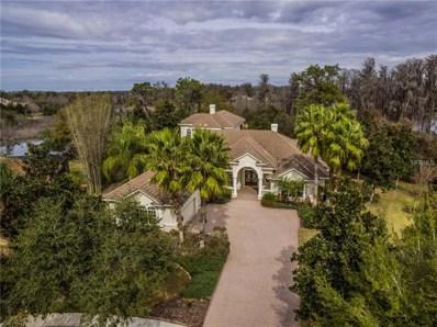21215 Sky Vista Drive, Land O Lakes, FL 34637 - MLS#: T2927975