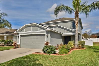 10727 Shady Preserve Drive, Riverview, FL 33579 - MLS#: T2927998
