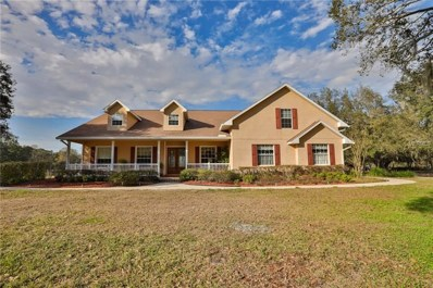 2702 Rogers Ranch Road, Lithia, FL 33547 - MLS#: T2928062