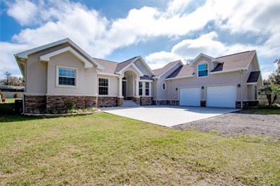 911 N Valrico Road, Valrico, FL 33594 - MLS#: T2928136