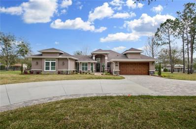 18413 30TH Street, Lutz, FL 33559 - MLS#: T2928194