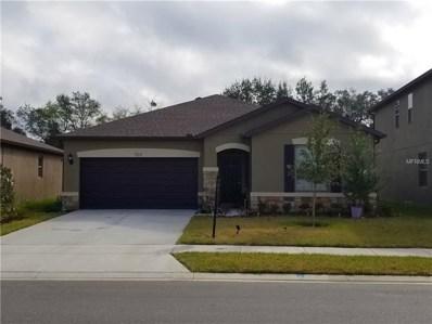 924 Scarlet Plume Lane, Brooksville, FL 34604 - MLS#: T2928492