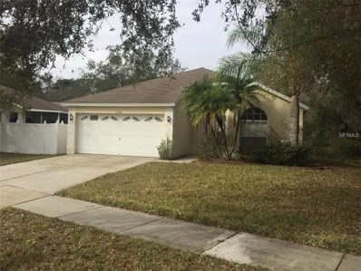 13420 Fawn Springs Drive, Tampa, FL 33626 - MLS#: T2928588