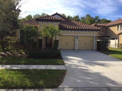 20322 Chestnut Grove Drive, Tampa, FL 33647 - MLS#: T2928752