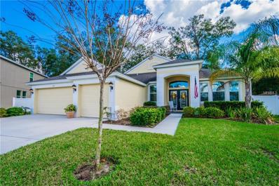217 Parsons Woods Drive, Seffner, FL 33584 - MLS#: T2928877