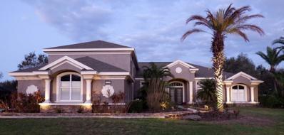 6046 Audubon Manor Boulevard, Lithia, FL 33547 - MLS#: T2929452