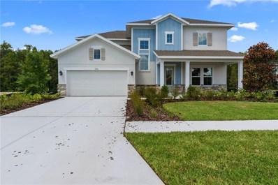 15356 Aviles Parkway, Odessa, FL 33556 - MLS#: T2929597