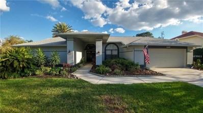 16407 Birkdale Drive, Odessa, FL 33556 - MLS#: T2929746