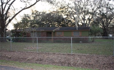 1307 Lindsey Road, Plant City, FL 33566 - MLS#: T2930175