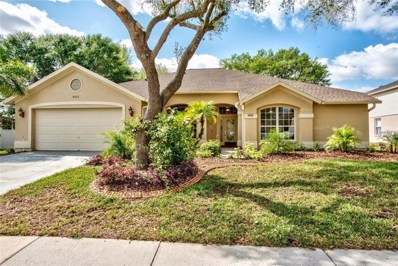 4003 Canter Court, Valrico, FL 33596 - MLS#: T2930310