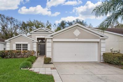 26813 Affirmed Drive, Wesley Chapel, FL 33544 - MLS#: T2930815