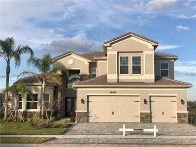 2724 Coco Palm Circle, Wesley Chapel, FL 33543 - MLS#: T2931304