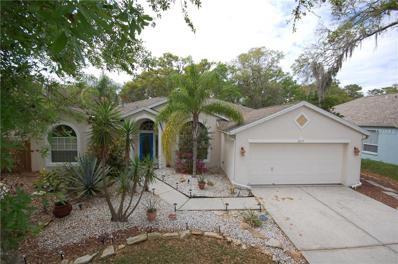 3715 Hollow Wood Drive, Valrico, FL 33596 - MLS#: T2931907