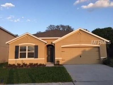 10607 Park Meadowbrooke Drive, Riverview, FL 33578 - MLS#: T2932062