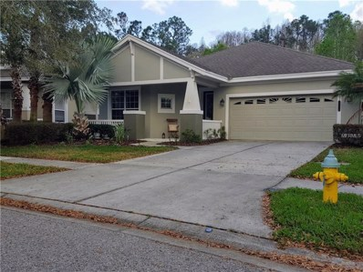 20058 Heritage Point Drive, Tampa, FL 33647 - MLS#: T2932230