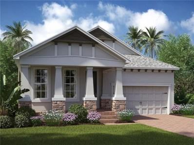 12321 Fitzroy Street, Odessa, FL 33556 - MLS#: T2932240