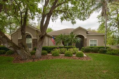 4206 Walden View Drive, Brandon, FL 33511 - MLS#: T2932582