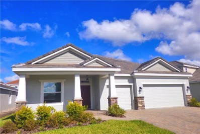 11937 Cinnamon Fern Drive, Riverview, FL 33579 - MLS#: T2932596