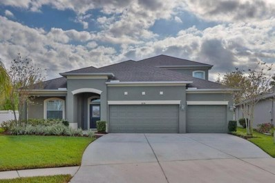 4234 Wildstar Circle, Wesley Chapel, FL 33544 - MLS#: T2932859