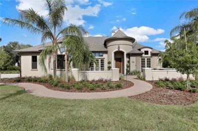 19121 Magnolia Farms Ln., Odessa, FL 33556 - #: T2933462