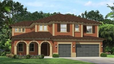 17804 Daisy Farm Drive, Lutz, FL 33559 - MLS#: T2933496