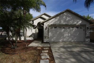 18947 Twinberry Drive, Tampa, FL 33647 - MLS#: T2933566