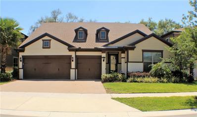 11203 Lark Landing Court, Riverview, FL 33569 - MLS#: T2933754