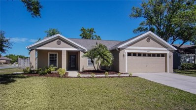 5809 Black Walnut Court, Tampa, FL 33625 - MLS#: T2934692