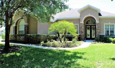 4206 Winding Vine Court, Brandon, FL 33511 - #: T2934828