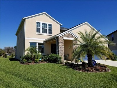 19250 Alexandrea Lee Court, Land O Lakes, FL 34638 - MLS#: T2935059
